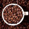degustace kávy (cupping)